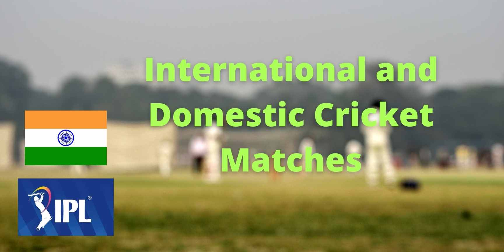 International and Domestic Cricket Matches
